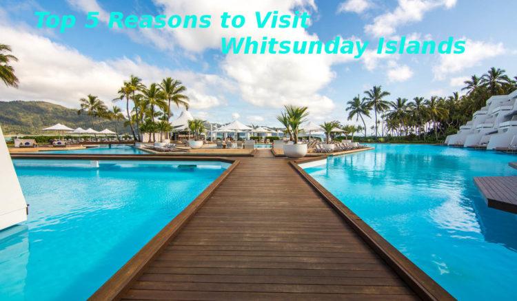 top-5-reasons-to-visit-whitsunday-islands