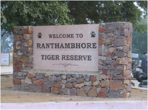 an-introduction-to-ranthambore-national-park